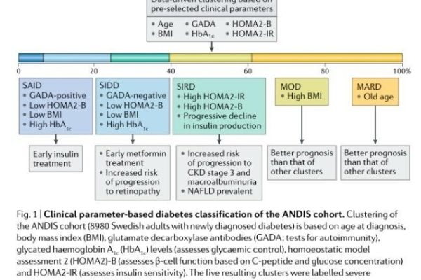 The Need to Subtype Type 2 Diabetes: Why and Why not?